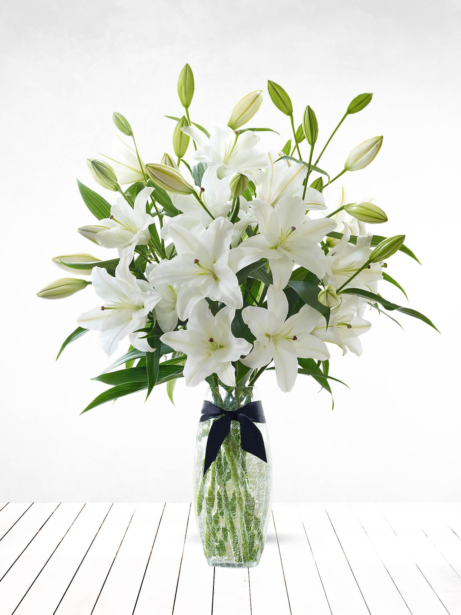 Beyaz Masumiyet Lilyumlar