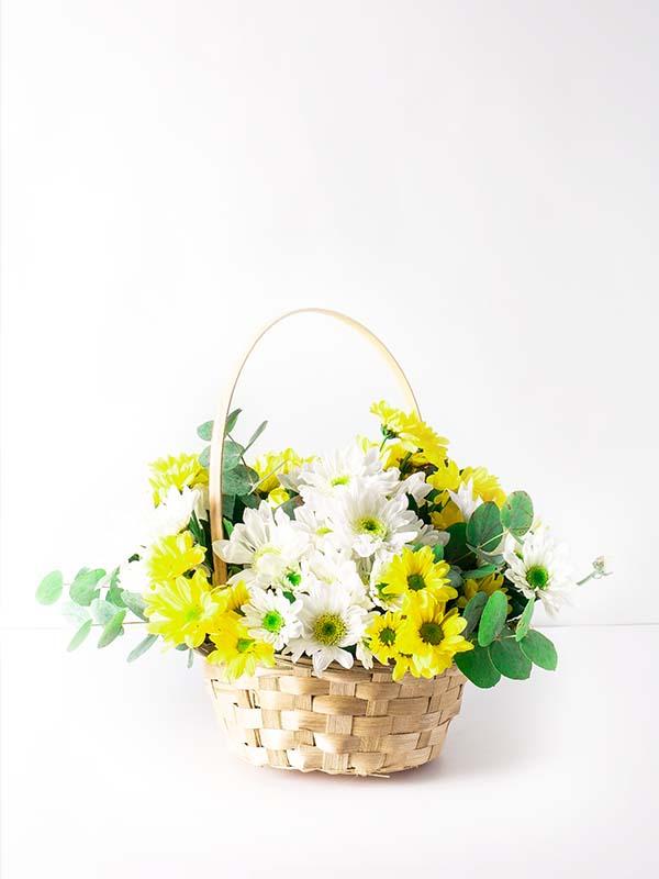 Papatyalı Çiçek Sepeti