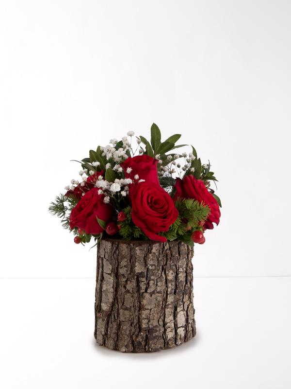 Ağaç Kütükte 5 Kırmızı Gül
