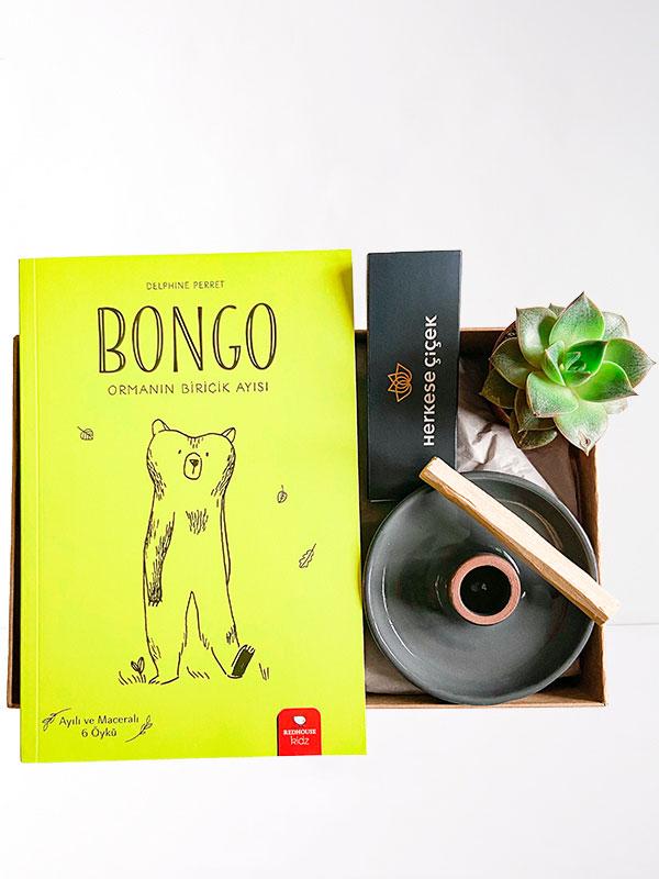 Ailem ve Bongo Hediye Kutusu
