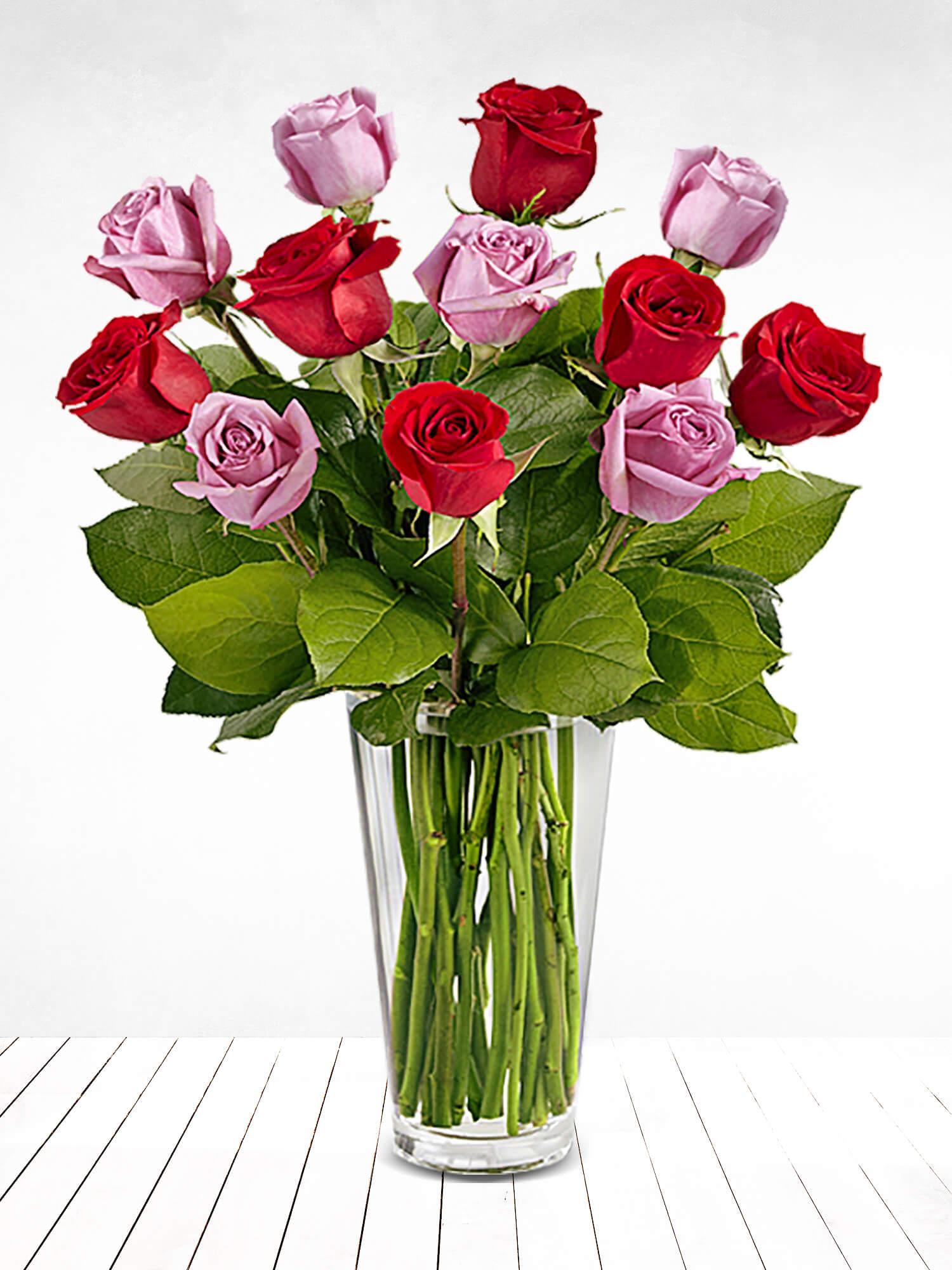 Mutluluğun İçinden Renkli Güller