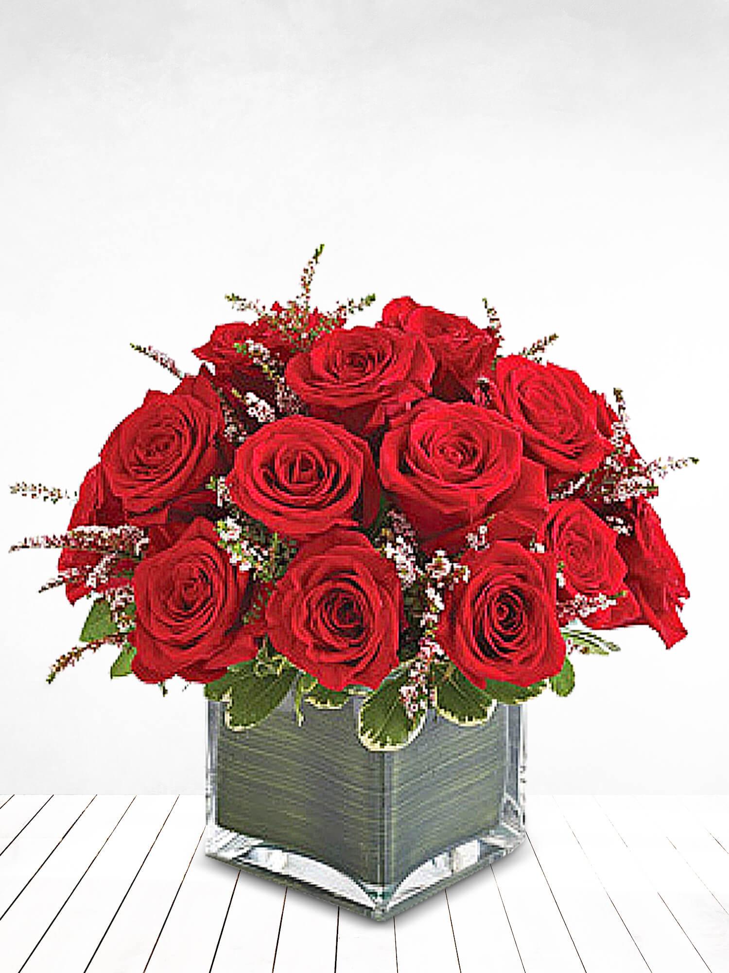 Kızıl Aşk Kırmızı Güller