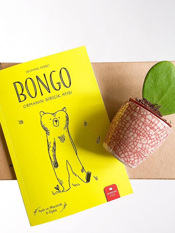 Bongo ve Ben