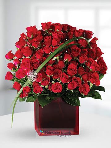 Aşk Zamanı Kırmızı Güller