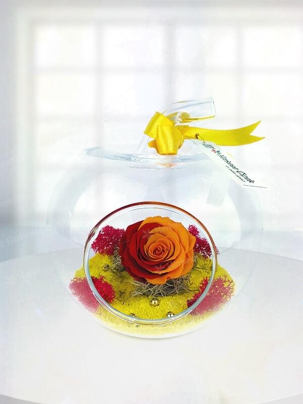 Elma Vazoda Sarı-Kırmızı Solmayan Gül