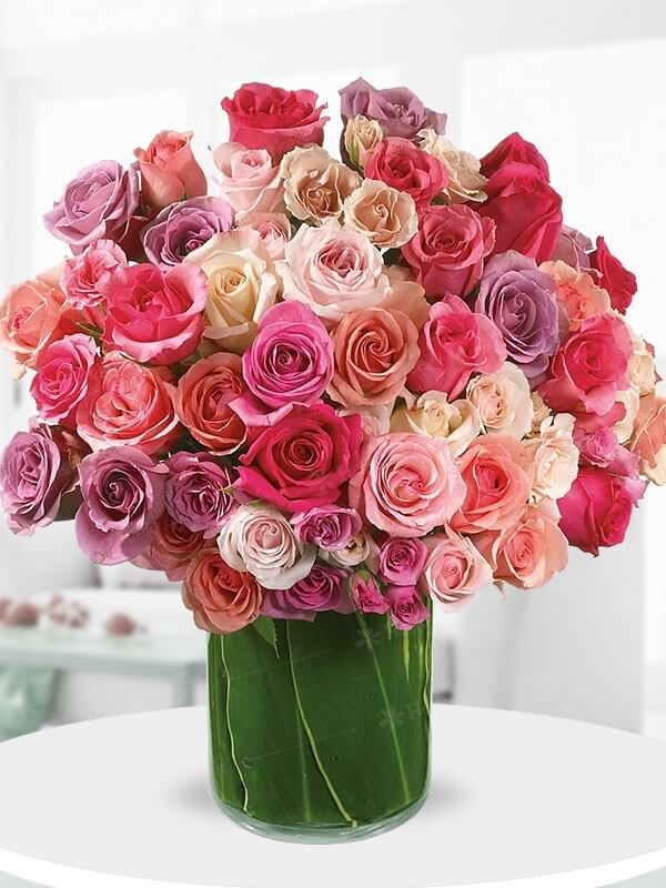 En Güzel Renkli Güller