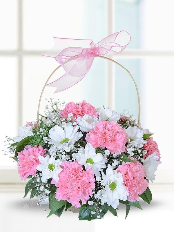 Karanfil ve Kırçiçeği Sepeti