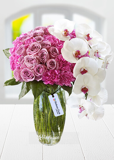 Masum Pembe Güller ve Orkide