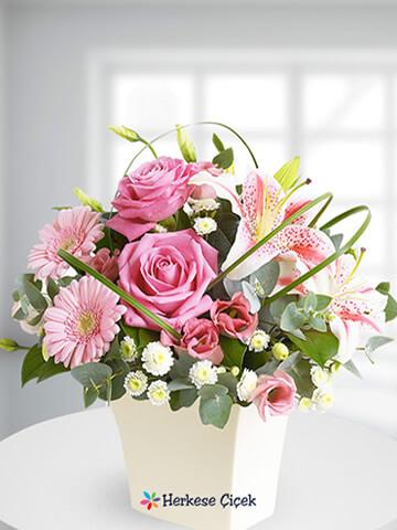 Pembe Düş Güller ve Lilyumlar